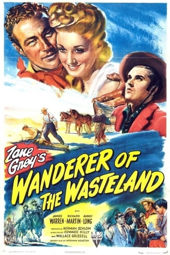 Poster of Wanderer of the Wasteland