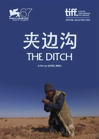 Poster of The Ditch