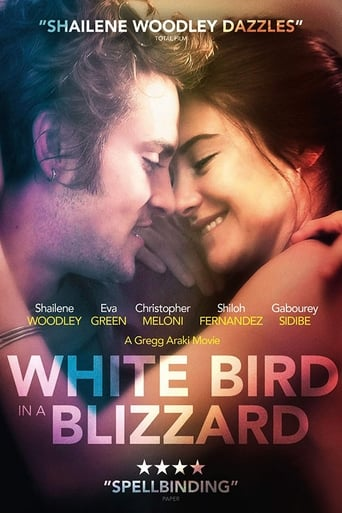 Poster of White Bird in a Blizzard