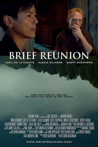 Poster of Brief Reunion