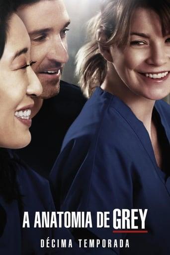 Anatomia de Grey 10ª Temporada - Poster