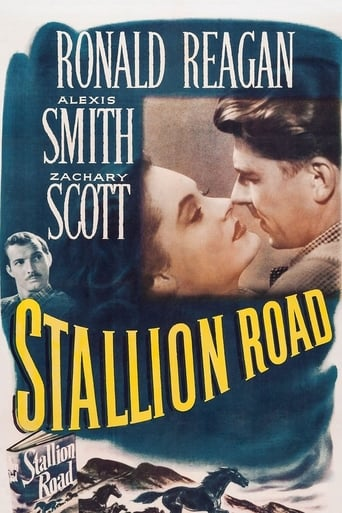 Poster of Stallion Road