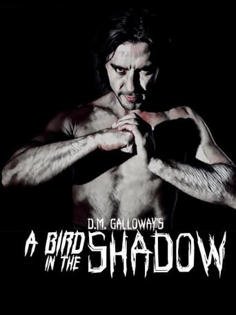 Poster of A Bird In The Shadow