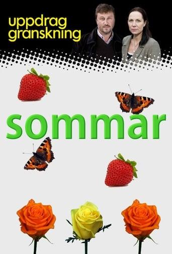 Poster of Uppdrag granskning sommar