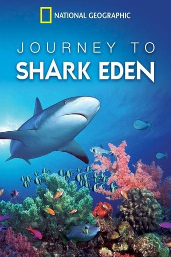 El edén del tiburón