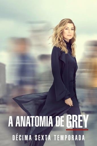 Anatomia de Grey 16ª Temporada - Poster