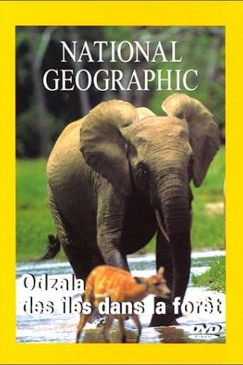 National Geographic : Odzalla, des îles dans la forêt
