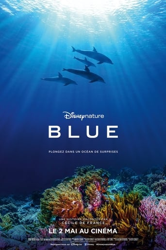 Poster of Dolphin Reef