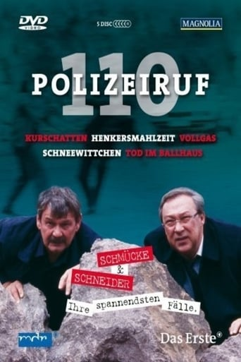 Poster of Polizeiruf 110