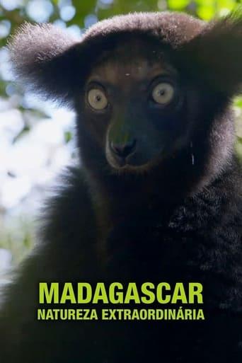 Madagaskars tierische Freaks
