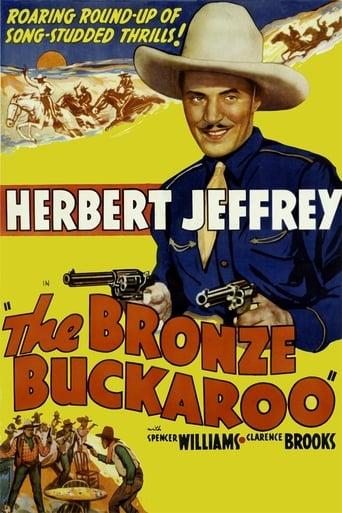 poster of The Bronze Buckaroo