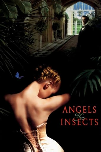 Angels and Insects