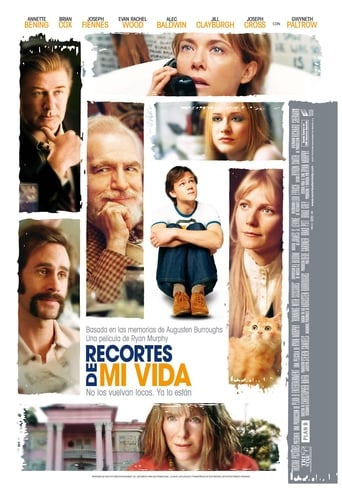 Poster of Recortes de mi vida