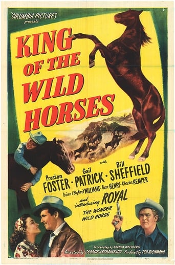 Poster of King of the Wild Horses
