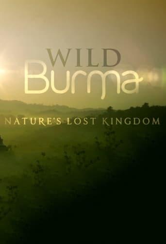 Poster of Expedición Birmania