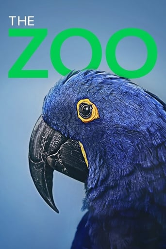 The Zoo Poster