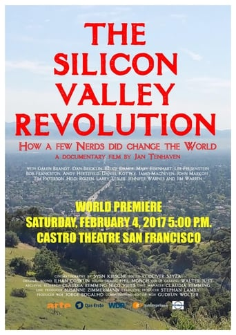 Die Silicon Valley-Revolution