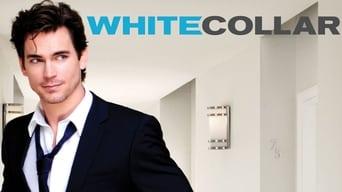 Білий комірець (2009-2014)