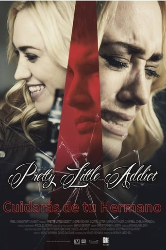 Poster of Pretty Little Addict