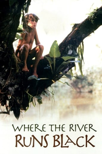 Poster of Where the River Runs Black