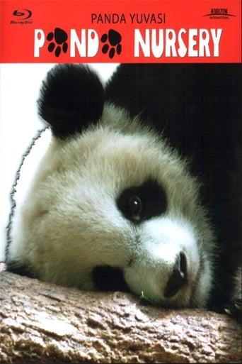 Panda Nursery