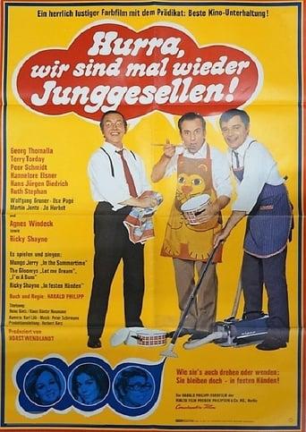Poster of Hurra, wir sind mal wieder Junggesellen!
