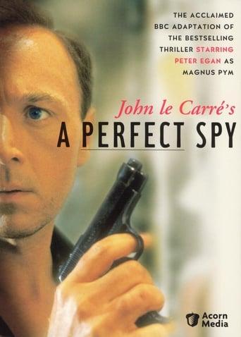 Poster of Un espía perfecto