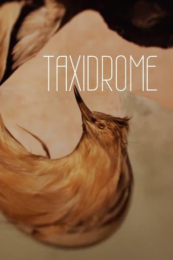Taxidrome