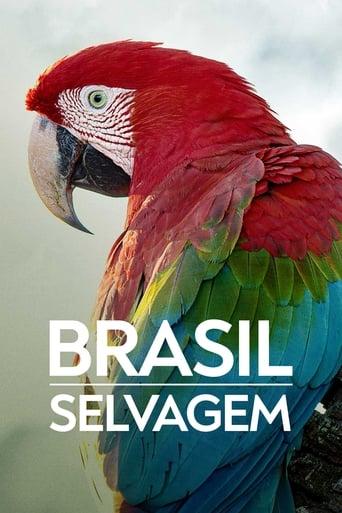 Brasilien ungezähmt