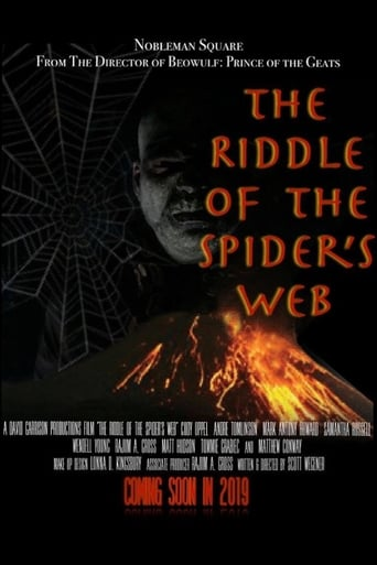 Poster of The Riddle Of The Spider's Web