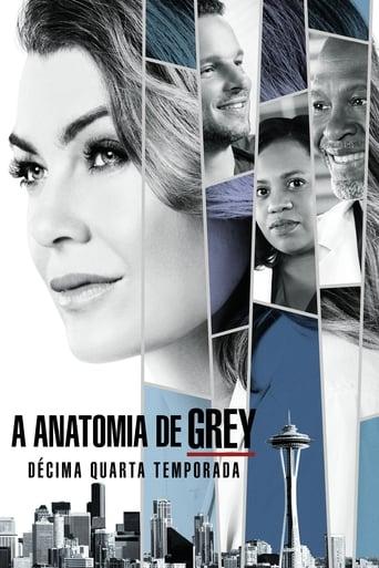 Anatomia de Grey 14ª Temporada - Poster
