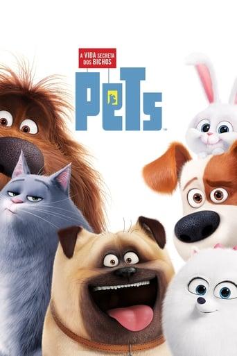 Baixar Pets: A Vida Secreta dos Bichos Torrent (2017) Dublado / Dual Áudio 5.1 BluRay 720p | 1080p Download