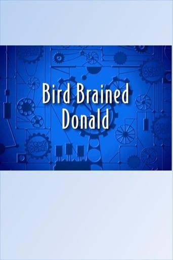 Watch Bird Brained Donald Free Online Solarmovies