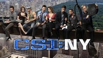 Місце злочину - Нью-Йорк (2004-2013)