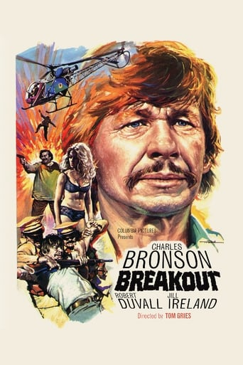 Poster of Breakout