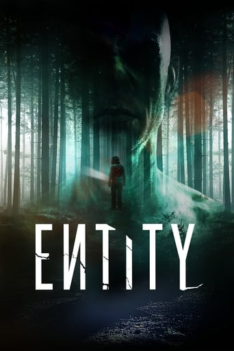 Poster of Entity