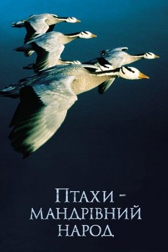 Птахи – мандрівний народ
