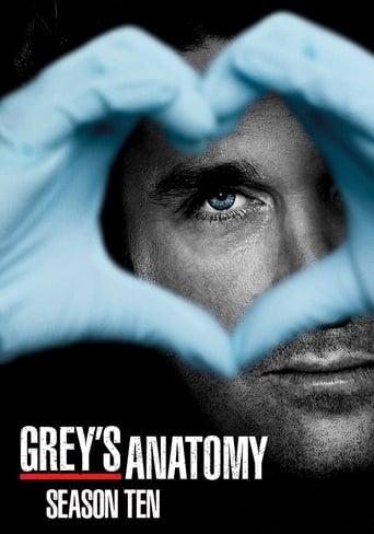A Anatomia de Grey 10ª Temporada - Poster