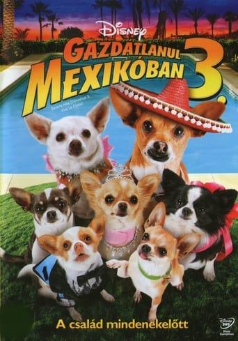 Gazdátlanul Mexikóban 3