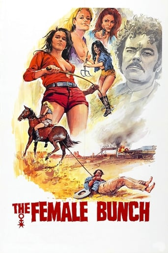 Poster of The Female Bunch