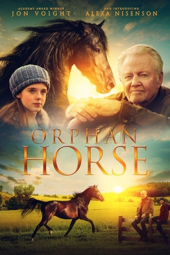 Poster of Orphan Horse