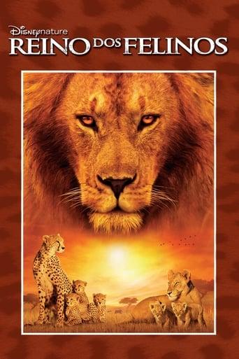 Reino dos Felinos - Poster
