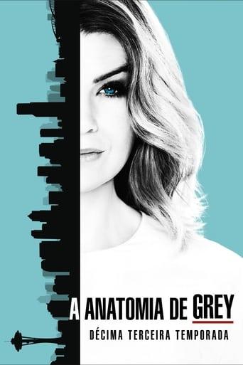 Anatomia de Grey 13ª Temporada - Poster
