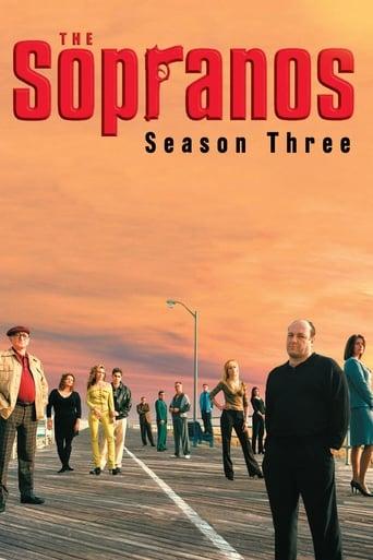 Sopranai: Mafijos kronika / The Sopranos (2001) 3 Sezonas žiūrėti online