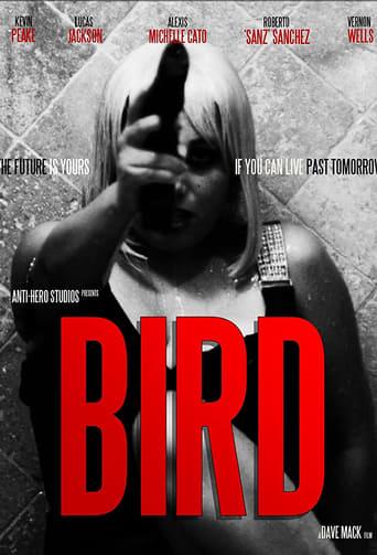 Poster Bird