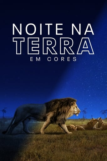 Noite na Terra em Cores 1ª Temporada Completa Torrent (2020) Legendado WEB-DL 720p e 1080p Download