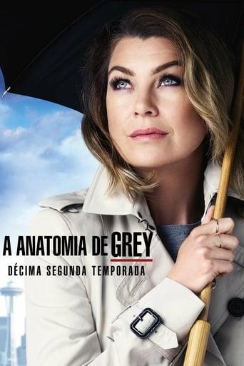 Anatomia de Grey 12ª Temporada - Poster