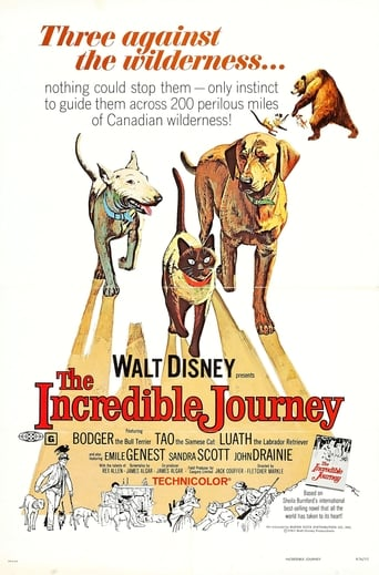 Poster of The Incredible Journey