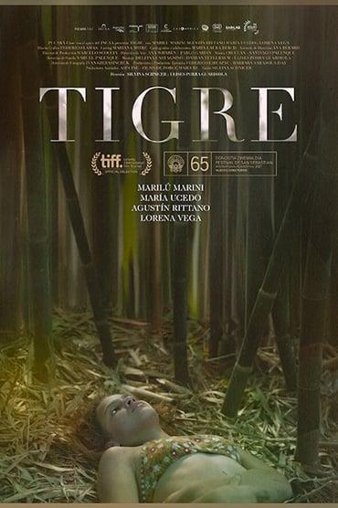 Tigre (2017)
