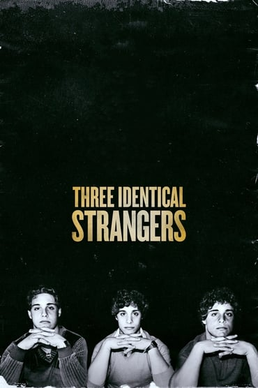 Three Identical Strangers poster photo